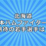 北海道日本ハムファイターズ 期待 若手選手